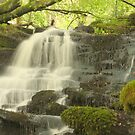 Aberfeldy Waterfall by JohnBuchanan