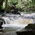 Waterfall - Ardeonaig, In the gorge by JohnBuchanan