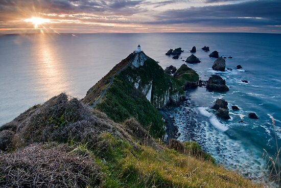 Nugget Point by Michael Treloar