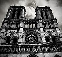 Notre Dame Cathedral, Paris, France by Campbell Stephenson