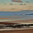 Swansea  by Sarah Fulford