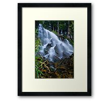 Low to the side Framed Print