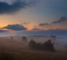 Lika by Ivan Coric