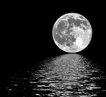 Moon~Shine by Terri~Lynn Bealle