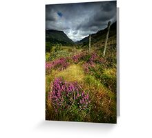 Wales : purple heather Greeting Card