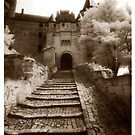 Chinon Castle by ragman