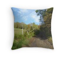 Path to the Swimming Hole Throw Pillow