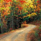 RICH MTN. ROAD,AUTUMN by Chuck Wickham