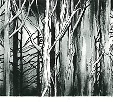 Woods by Wayne Grivell