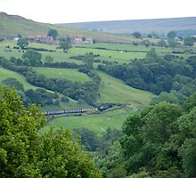 NYMR> Road To Goathland. by dougie1page2