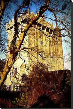 Blarney Castle by kirsten116
