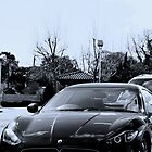 Maserati - Grand Turismo by Richard Owen