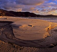 Dawn Waterloo Bay by Travis Easton