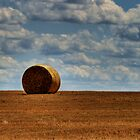 Hay on the Horizon by PGornell