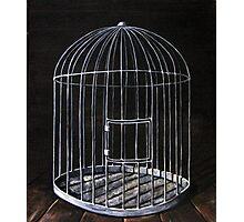 The Bird Cage Photographic Print