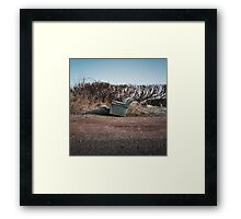 Lay Waste Framed Print