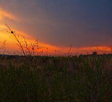 quando il sole va via by Andrea Rapisarda