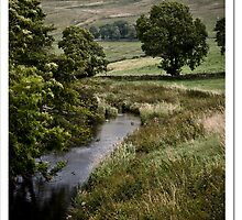 Semer Stream by Chris Stenway