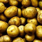 Golden Potatoes  by MikeJagendorf