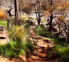 Path down to the river's edge by georgieboy98