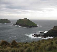 Doughboy Islands North west Coast Tasmania by JackieThow