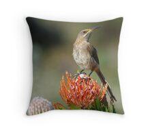 Sugarbird Throw Pillow