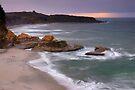 Cape Foulwind by Paul Mercer