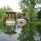 Chinese garden by Elena Skvortsova