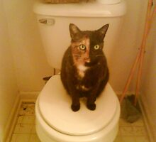 Toilet Kitty by Leeannarose