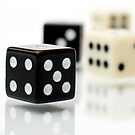 Black & White Dice by Wendy Kennedy