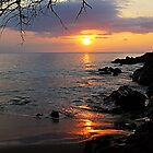 Makena Landing Sunset by Teresa Zieba