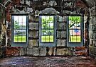 Fort's Windows by Evelina Kremsdorf