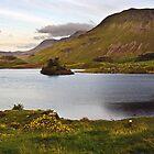Cregennan Lake at Dusk by ffotoCymru