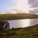 Dartmoor: Evening at The Avon Dam by Rob Parsons