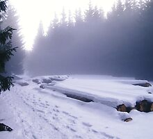 Slovak snowland by TapSnaps