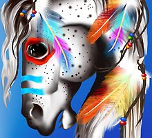 Painted Pony by Lotacats