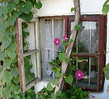 Romantic window by snefne