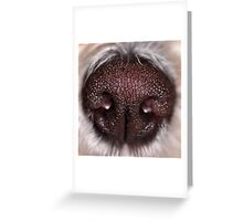 puppy's nose Greeting Card
