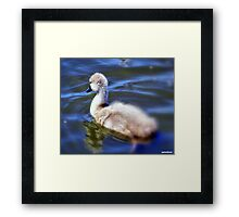 All By Myself. Framed Print