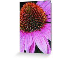 Rainbow Cone Flower Greeting Card