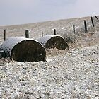 Hay Bales wait out the Winter by DMHImages