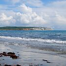 Looking towards Culver Cliff by Janice Heppenstall