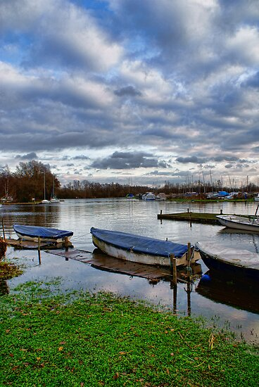 Norfolk Broads Early Winter  by Mark Snelling