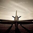 Spitfire by Rhubarbonline
