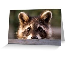 """""""Ever Have That Feeling Your Being Watched?"""" Greeting Card"""