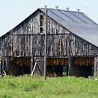 The Weathered Old Barn by Ruth Lambert