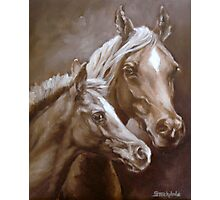 Arab Mare and Foal. Photographic Print