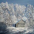 WHITE VEIL by PRIYADARSHI GAUTAM