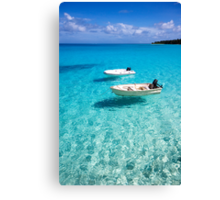 Floating in Paradise Canvas Print