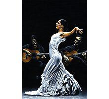 Concentracion del funcionamiento del flamenco Photographic Print